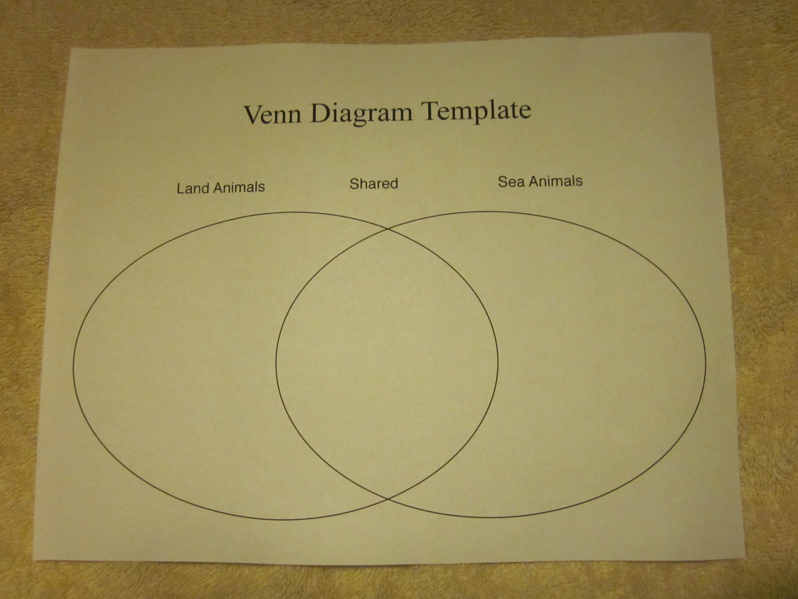 Organizing thoughts in writing venn diagrams schoolmarm ohio now ccuart Images