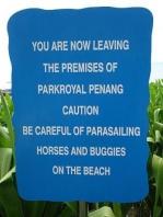 comma-fail-parasail-horses