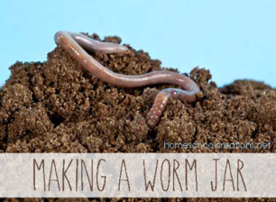 How-to-make-a-worm-jar.png